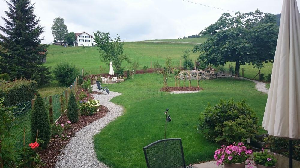Gartensanierung 2
