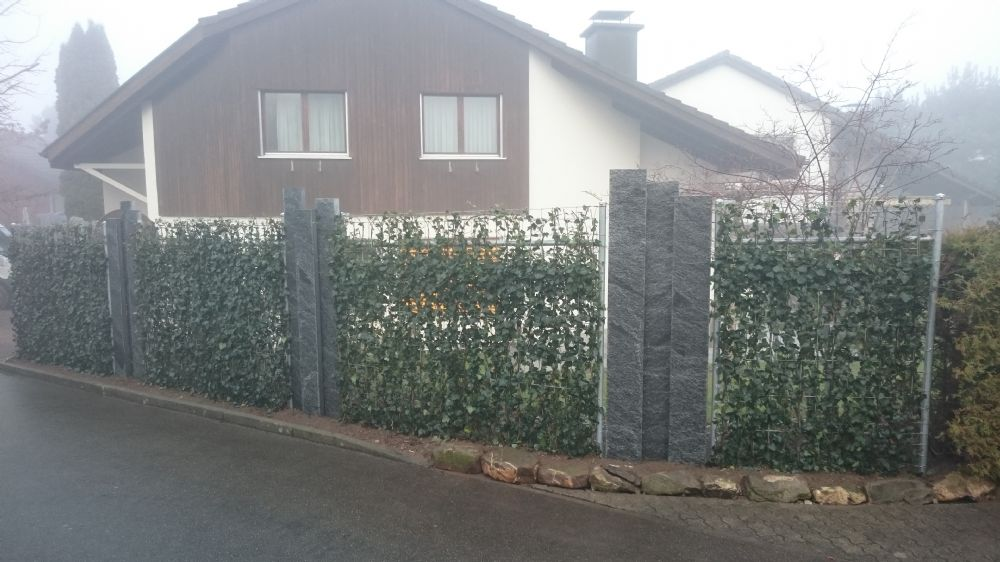 Granitpalisaden begrünt 3