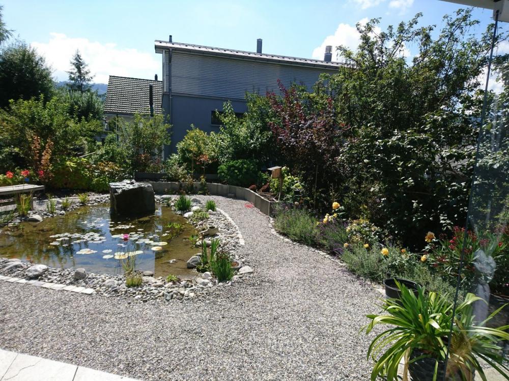 Gartenneugestaltung 1